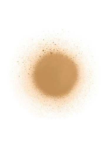 Diego Dalla Palma Diego Dalla Palma  Spray On Tights 201  Fondöten Renksiz